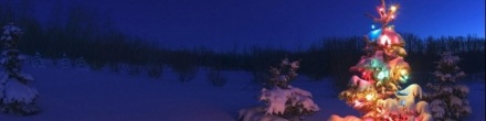 christmas-night-with-snowy-winter-scene-banner-background-800x200