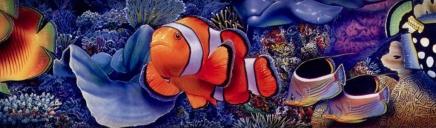 white-strip-fish-header-2048-1024x300