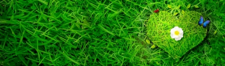 romantic-grass-heart-header-5032
