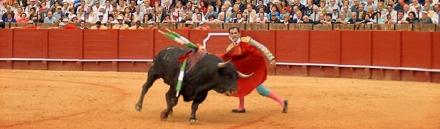 impressive-spanish-toro-website-header