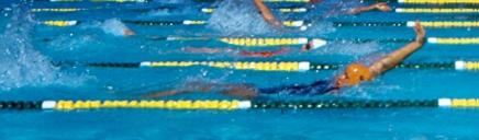 back-swimming-pool-races-header