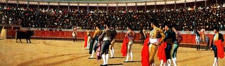 matadors-and-bullfighting-starting-at-bullring-website-header