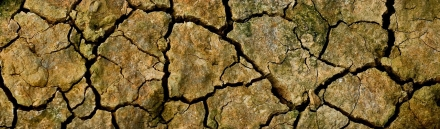 dry-cracked-farming-ground-close-up-background-header