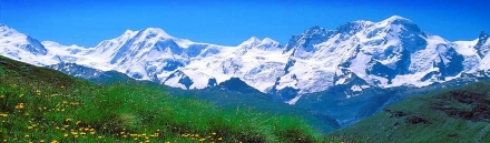 swiss-alps-snow-mountains-and-flowers-valley-landscape-web-header
