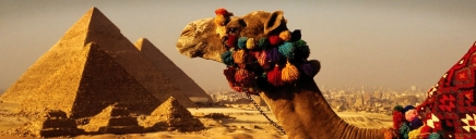 camel-in-front-of-great-pyramids-of-giza-egypt-website-header_size-1024x300