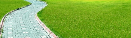 green-grass-and-curved-garden-path-web-header_size-1024x300