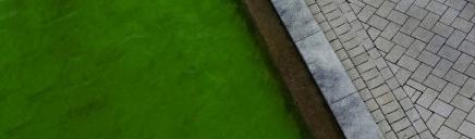 beautiful-home-garden-path-background-header_size-1024x300