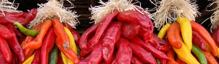 very-hot-chili-header