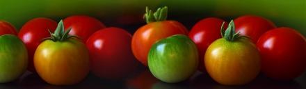 cherry-tomatoes-header