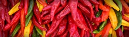 hot-chili-header